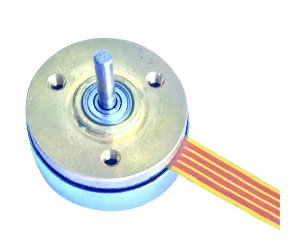20mm Outer Rotor Brushless DC Motor